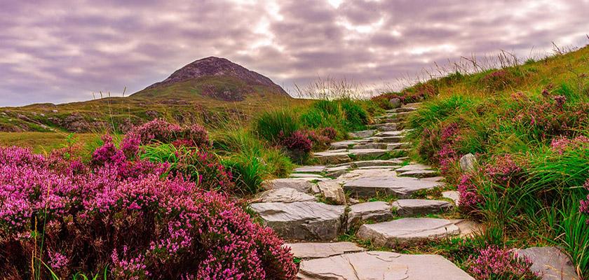 W kraju klifów, harfy i piwa Guinness, czyli Irlandia okiem Eweliny